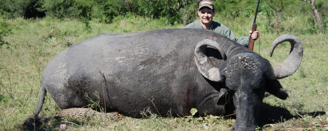 Argentina Hunting with a Water Buffalo