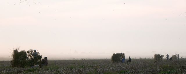 Dove Hunters in a field in Argentina