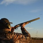 dove hunting in argentina